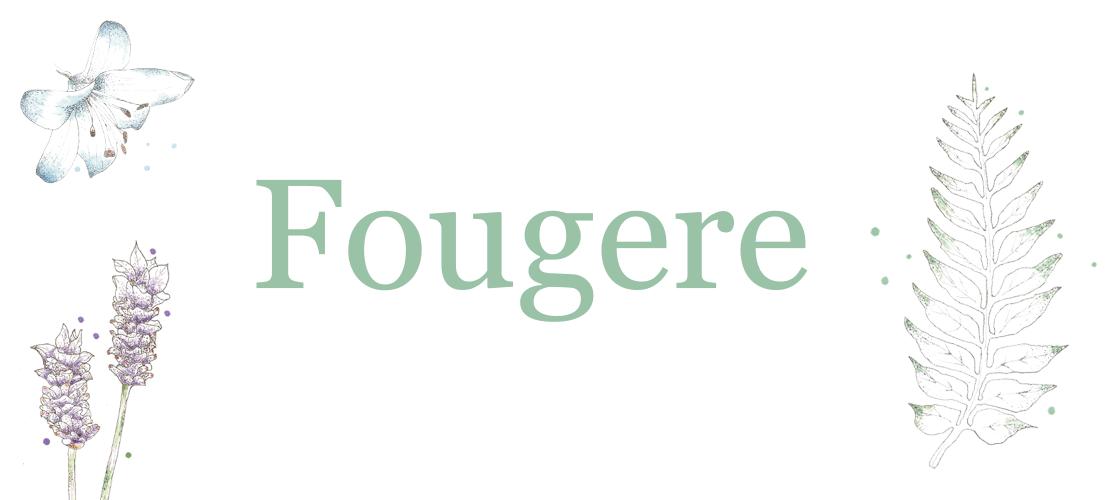 Tacuba13_Fougere